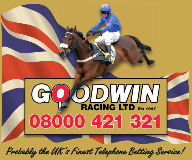 GOODWIN RACING LTD